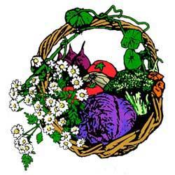 GardenGoo_Basket250p_w